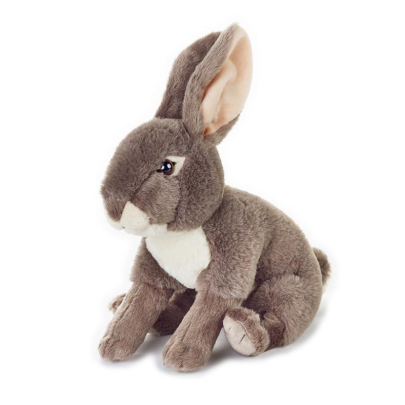 白尾长耳大野兔